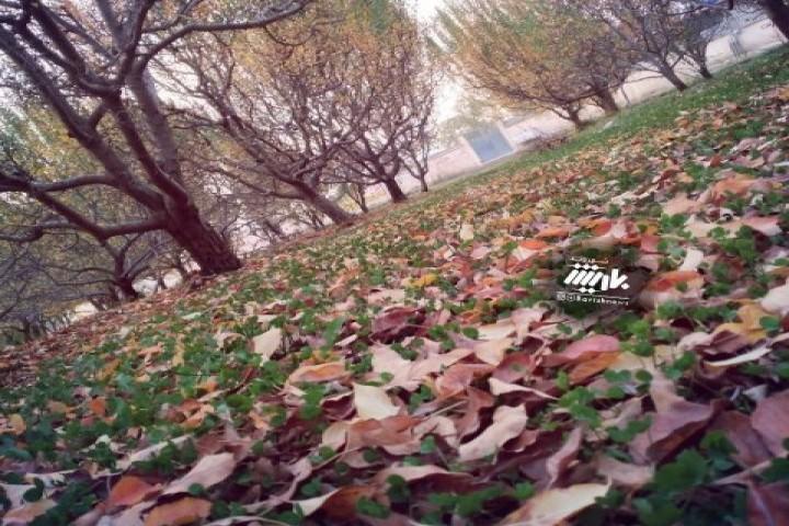 طبیعت زیبای پاییری روستای دستجرد
