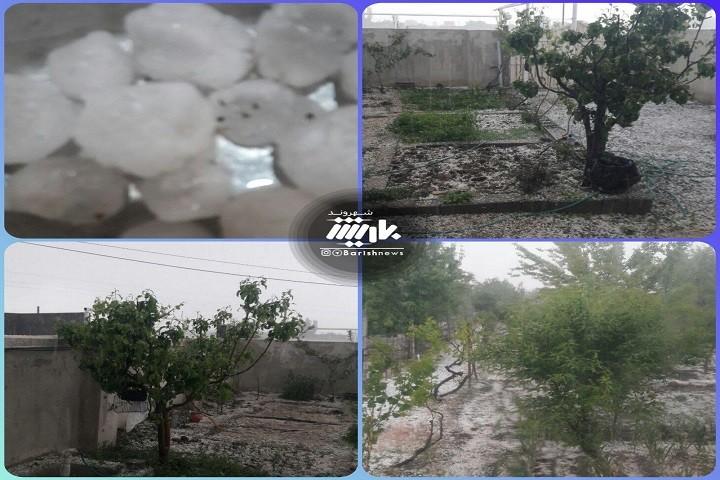 بارش تگرگ و خسارت دیدن زمین های کشاورزان / روستای جبل کندی