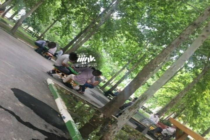 تجمع در پارک ها