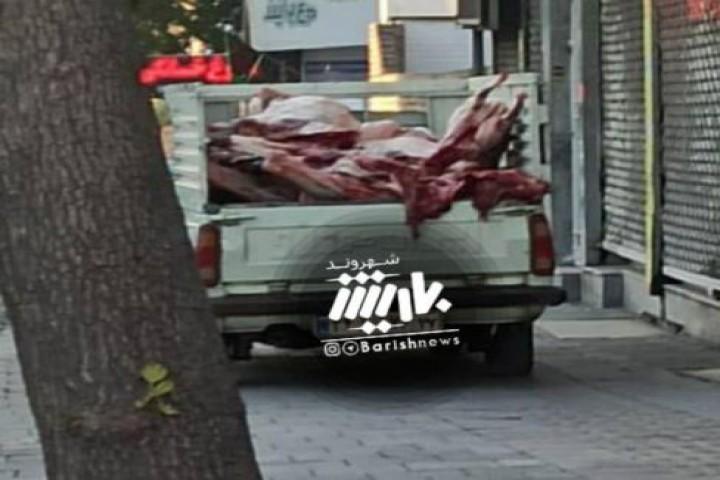 حمل گوشت به صورت غیراصولی در ارومیه