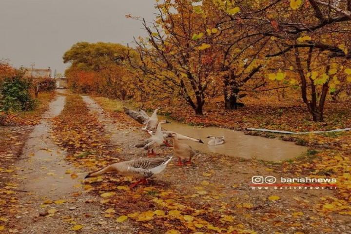 پاییز در روستای گلدانلو