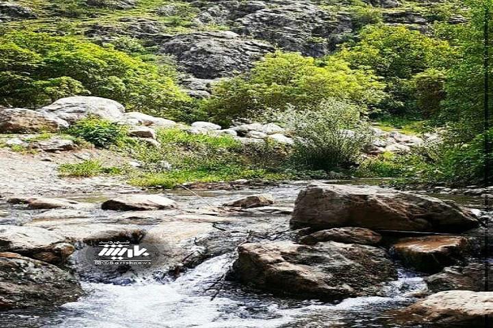 طبیعت بی نظیر دره شهدا