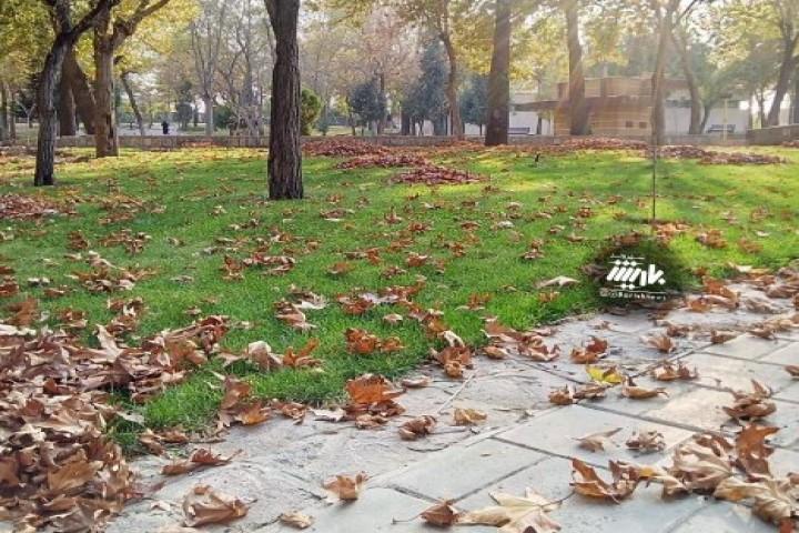 فصل ریزش برگهای پاییزی/ پارک ساعت
