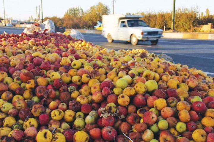 تکرار روزهای تلخ بازار سیب در آذربایجانغربی