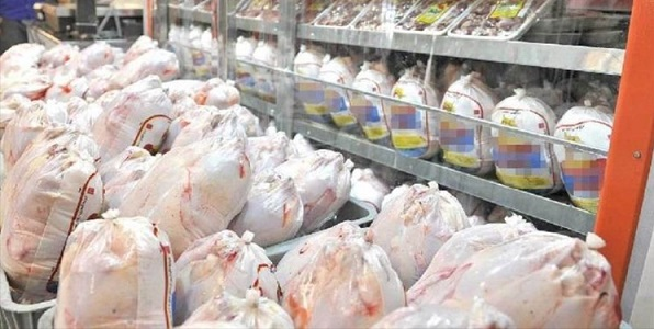 کمبود گوشت مرغ در ارومیه وجود ندارد