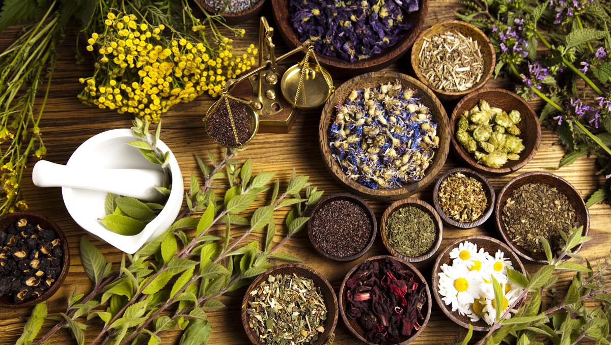 لزوم برندسازی گیاهان دارویی در آذربایجان غربی