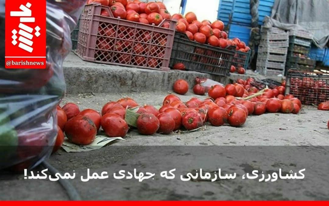 کشاورزی، سازمانی که جهادی عمل نمیکند!