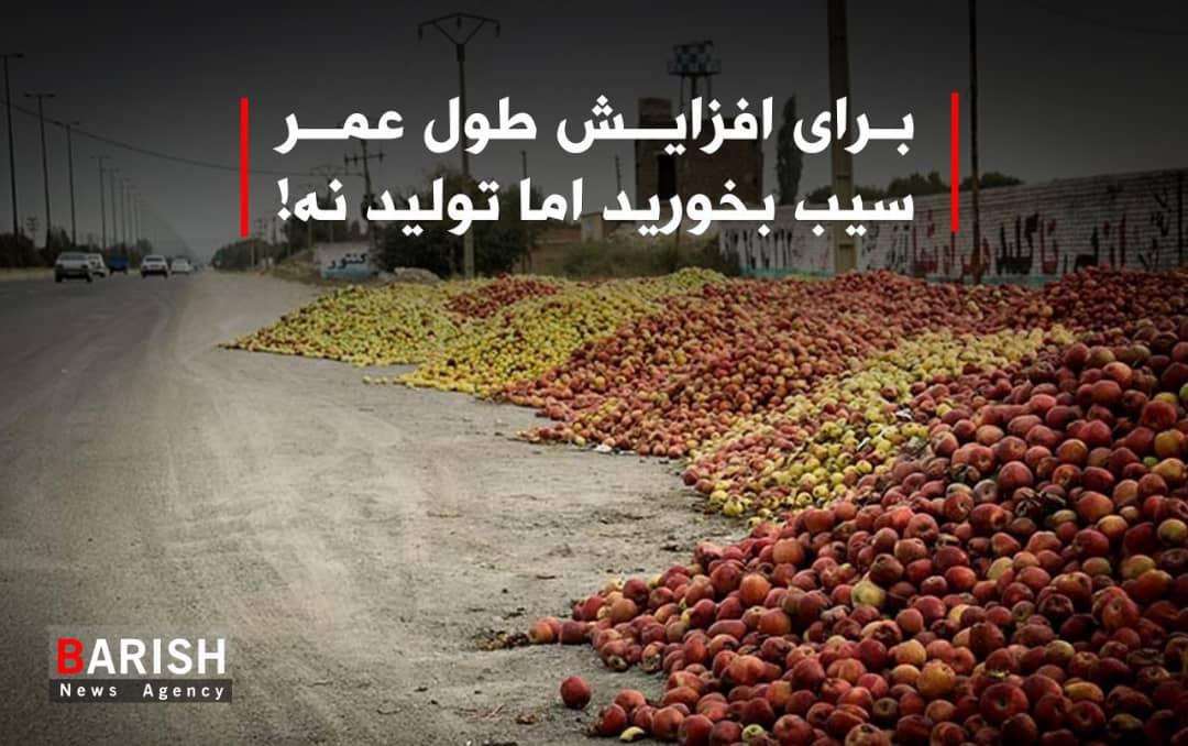 برای افزایش طول عمر سیب بخورید اما تولید نه!