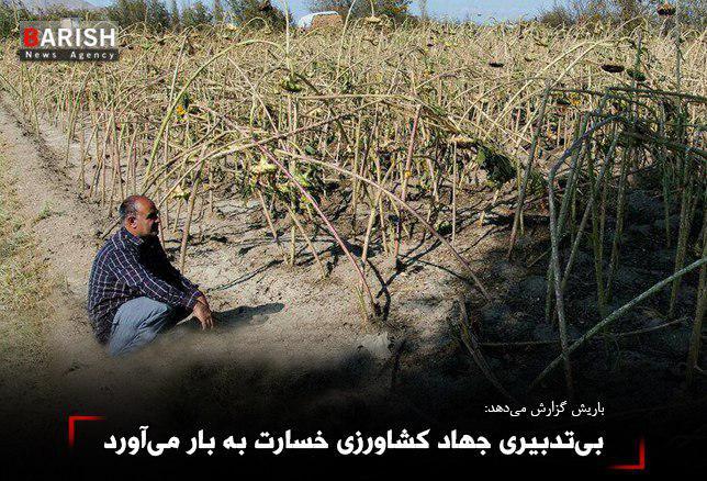 بیتدبیری جهاد کشاورزی خسارت به بار میآورد