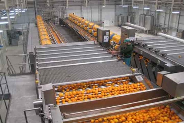 بزرگترین واحد تولید کنسانتره ارومیه دیر، اما افتتاح شد