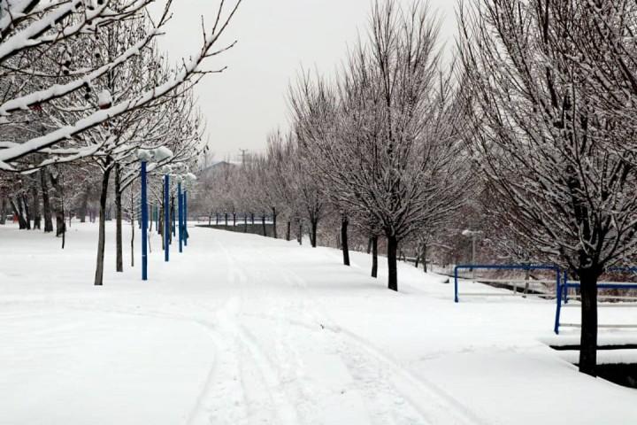 آغاز بارش برف در ارومیه