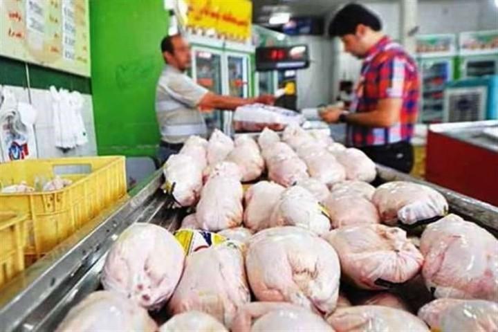 بازار پر تلاطم گرانی مرغ در ارومیه