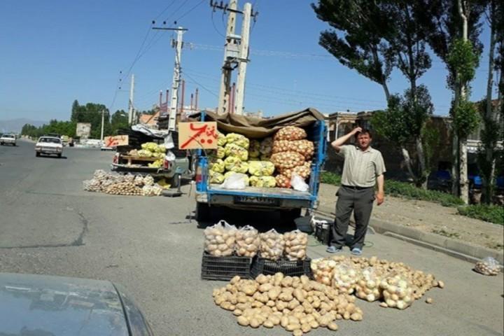 ضرورت رسیدگی به آلودگیهای بصری ناشی از وانتیهای میوه فروش