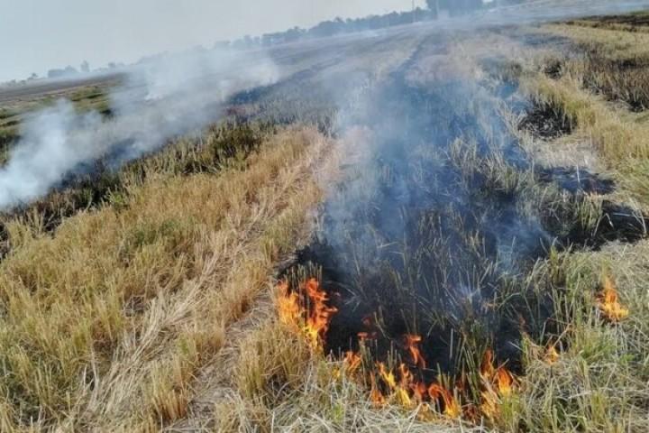 آتش سوزی زمینهای بایر در ارومیه نفس شهر را بند آورد