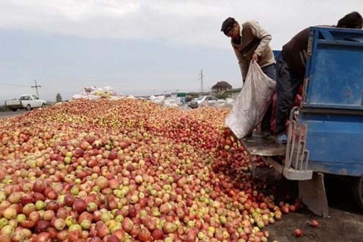 تراژدی غمگین و تکراری انباشت سیب در جاده های آذربایجان غربی