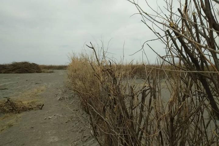 مصرف بیرویه از منابع آب علت نابودی دریاچه ارومیه