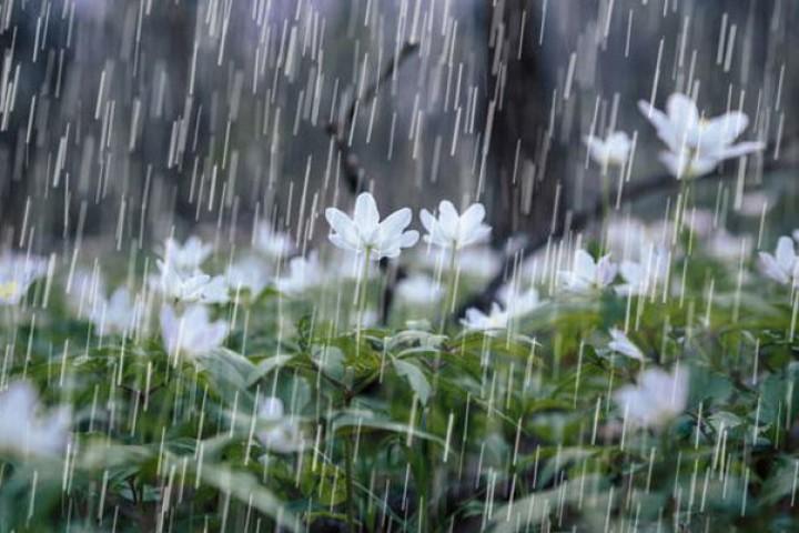 تداوم بارندگی در آذربایجانغربی