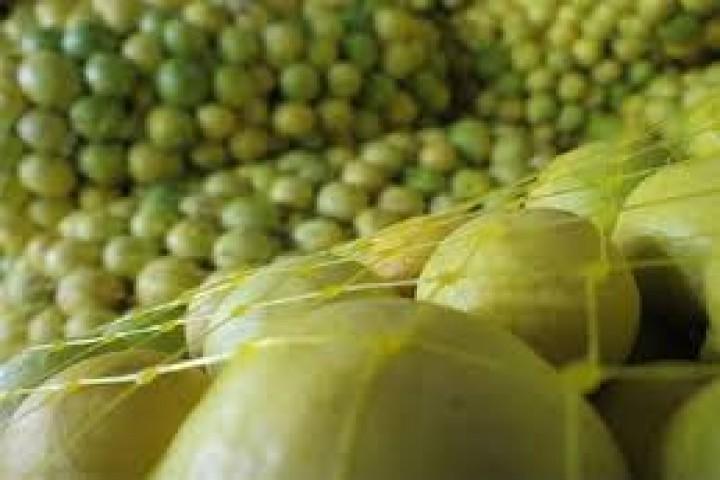 بازار بینظارت قیمت لیموترش در ارومیه