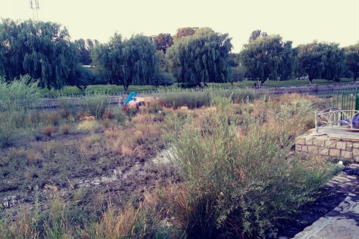 تبدیل رودخانه شهرچای ارومیه به باتلاقی در شهر