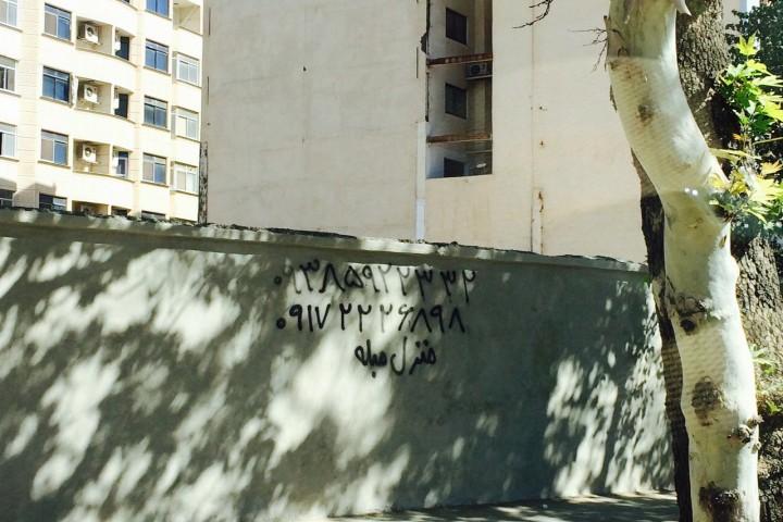 دیوار نوشتههای پارک جنگلی دور از شان شهروند