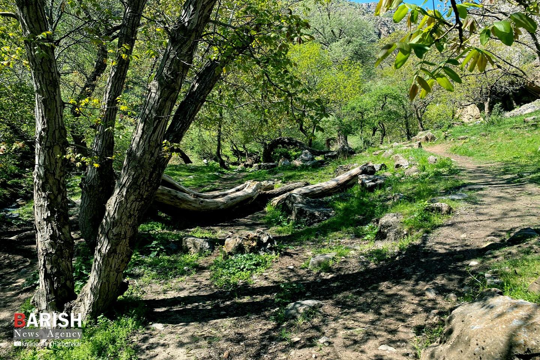 طبیعت زیبای ارومیه