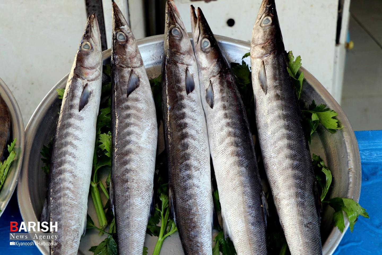 بازار ماهی فروشان ارومیه