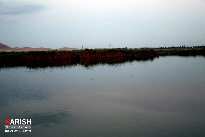 طبیعت تالاب گلمرز ارومیه