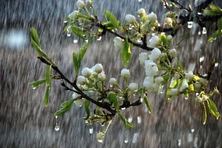 تدوام بارش باران در آذربایجان غربی