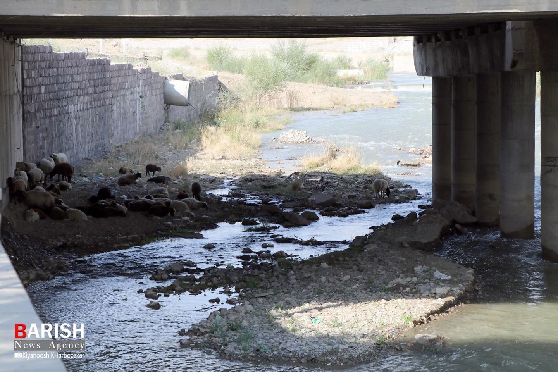 بی توجهی به لایروبی شهرچایی ارومیه همچنان ادامه دارد