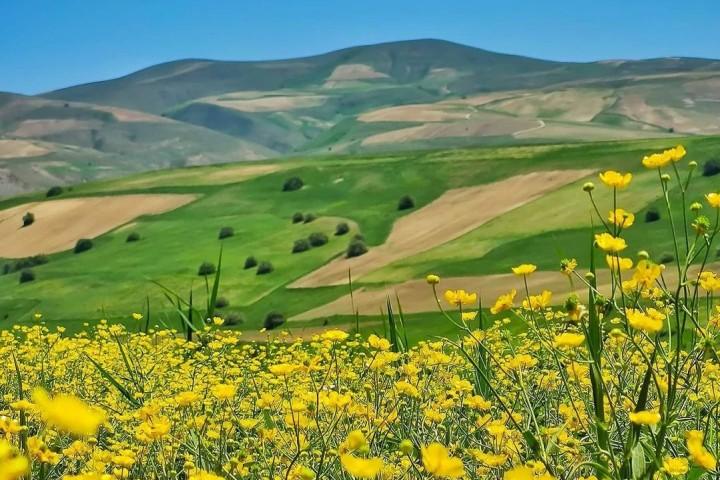 استقرار جو آرام و پایدار در آذربایجانغربی