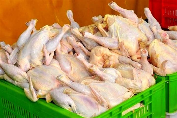 کمبود تولید نداریم؛ اما در بازار هم مرغ نیست!