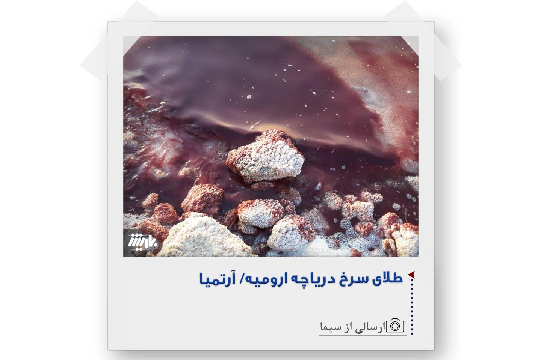 عکس های برگزیده مخاطبان باریش