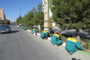 فضای سبز ارومیه زیر سایه بی توجهی مسئولان شهری
