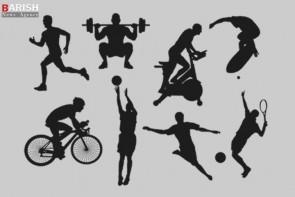 ضرورت استفاده از افراد متخصص در راس هیاتهای ورزشی استان