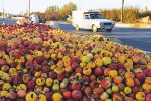 وقتی دست رنج کشاورزان در کنار جادهها خاک میخورند!