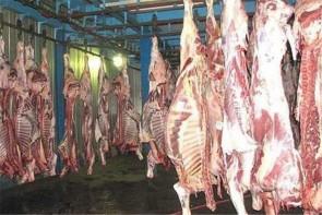 نظارت جدی بهداشت برای عرضه گوشت در بازار