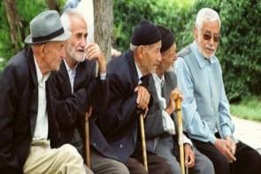 سالمندان گنجینه فراموش شده خانواده ها