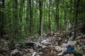 پسماندهای پلاستیکی / معضلی که تبدیل به بحران در طبیعت می شود